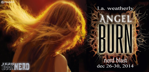 Angel_Burn_Tour_Banner